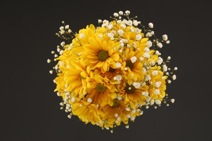 Sunflowers and baby's breath