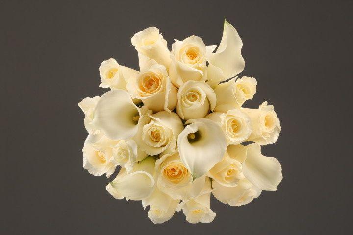 mixed white rose calla fv copy