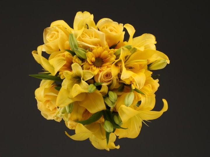 Tmx 1467149908339 9964 Mixed Flower Yellow Fv Santa Rosa, CA wedding florist