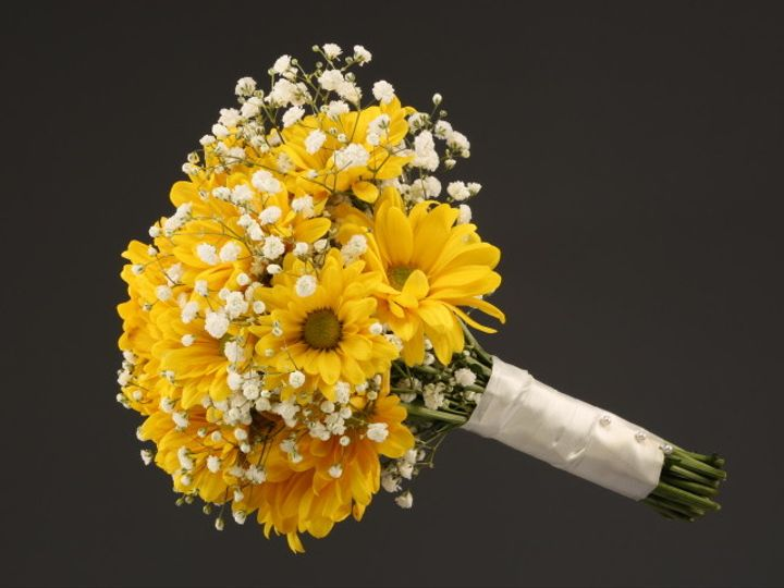 Tmx 1467149923125 9971 Yellow Daisy  Babys Breath Sv Dearborn, MI wedding florist