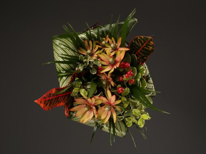 Tmx 1467149936230 9983 Exotics 1 Fv Dearborn, MI wedding florist