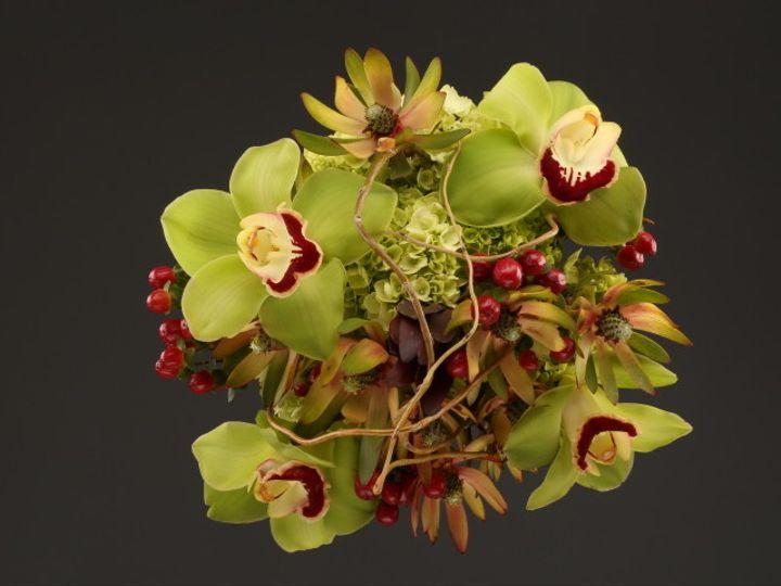 Tmx 1467149945045 9990 Exotics 2 Fv Santa Rosa, CA wedding florist