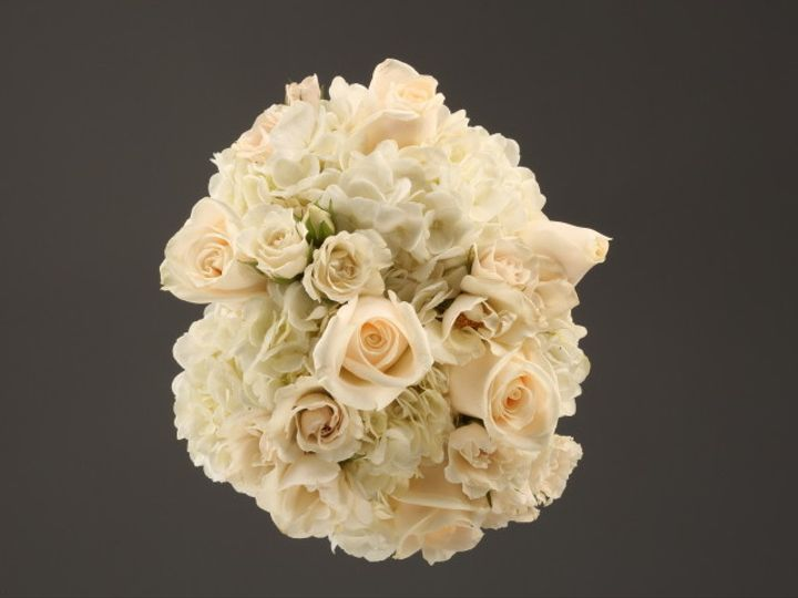 Tmx 1467150638289 9932 White Rose  Hydrangea Fv   Copy Dearborn, MI wedding florist