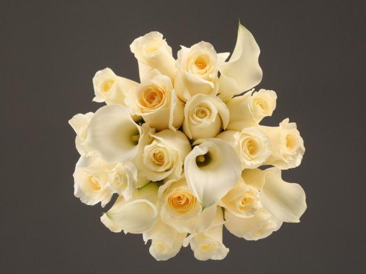 Tmx 1467150646597 9934 Mixed White Rose  Calla Fv   Copy Santa Rosa, CA wedding florist