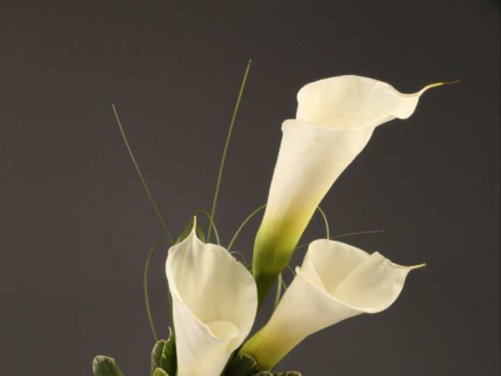 Tmx 1467150654759 9939 3 White Calla Sv Santa Rosa, CA wedding florist