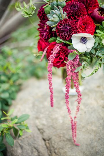 weddingwire flowers 3 photography cambridge md. Black Bedroom Furniture Sets. Home Design Ideas