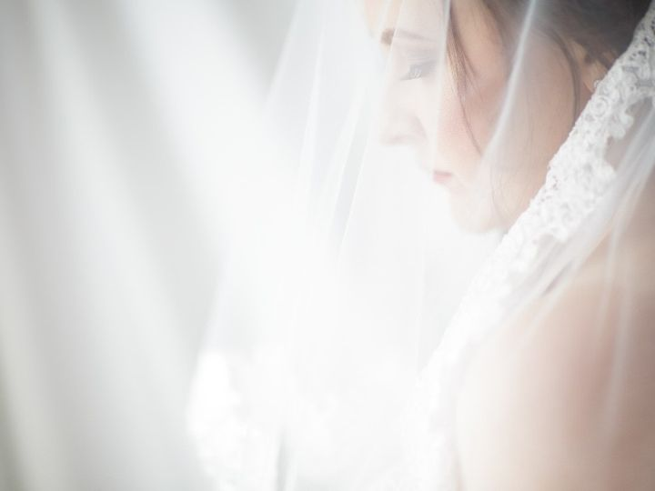 Tmx Veil 51 23269 158627868445740 McHenry, IL wedding dress