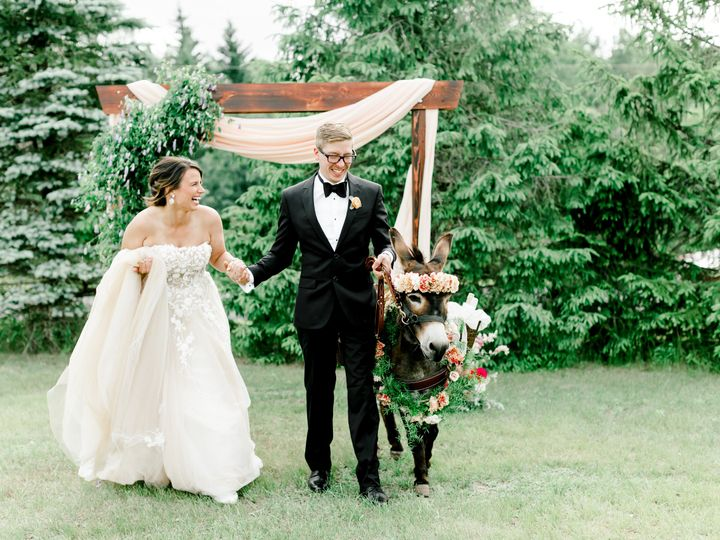 Tmx Donkey Styled Shoot Turpin 7817 51 1014269 160384616441568 Minneapolis wedding planner