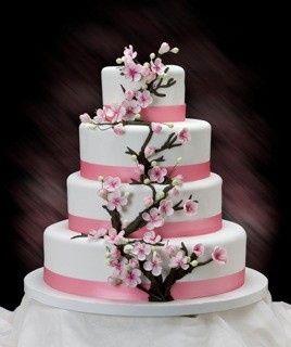 Tmx 1481591106331 Capture00006 Kenosha wedding cake