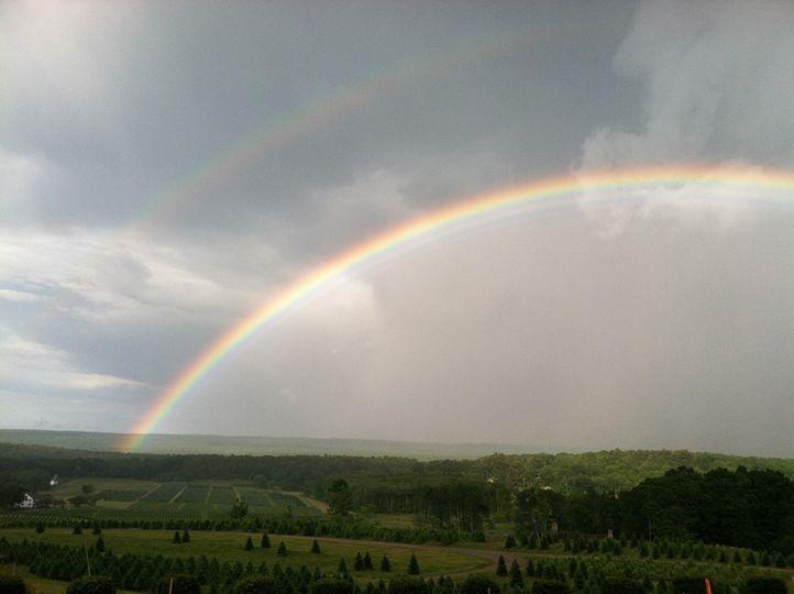 Rainbow outside the venue