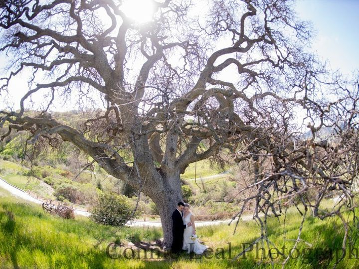 Tmx 1405183886638 Clf1084 Clayton, CA wedding venue