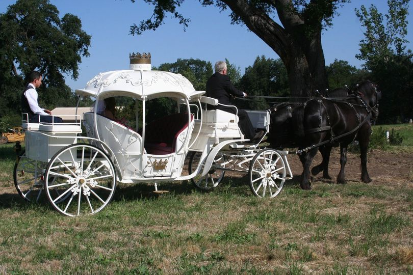 Spacious white carriage