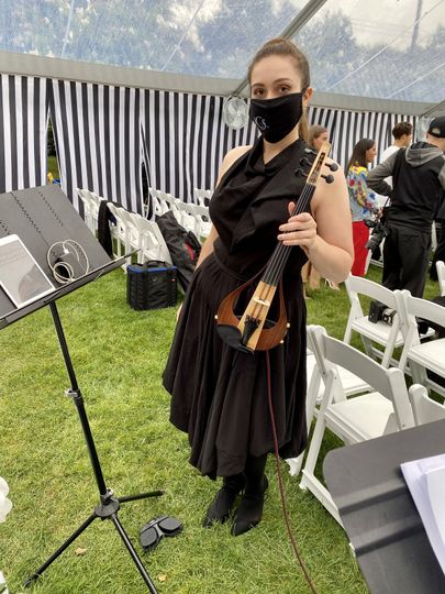 Solo Electric Violinist