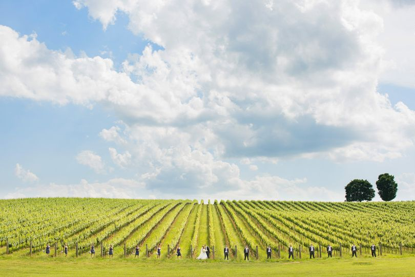 trump vineyard wedding