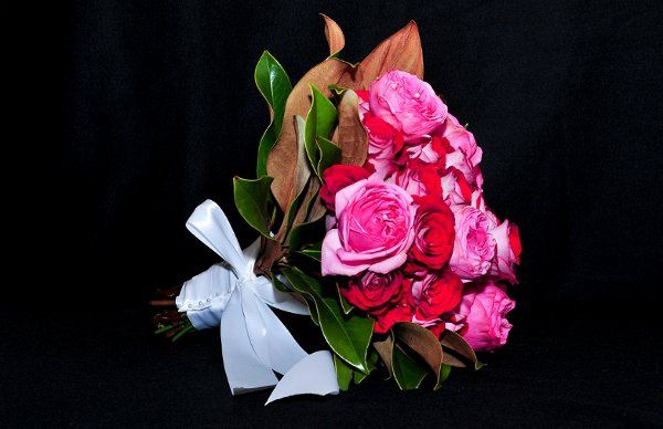 FloralDreams10080Edit