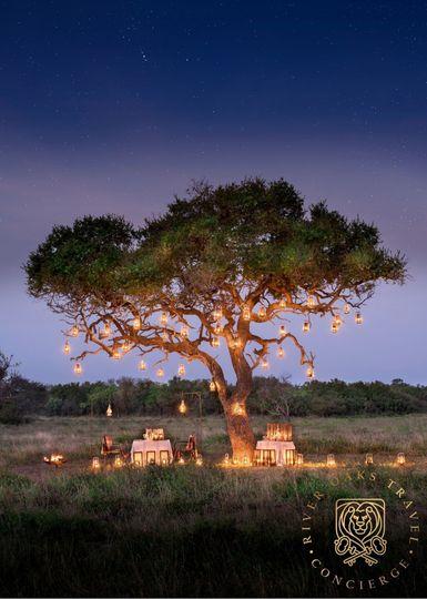 Romantic dinner in Africa