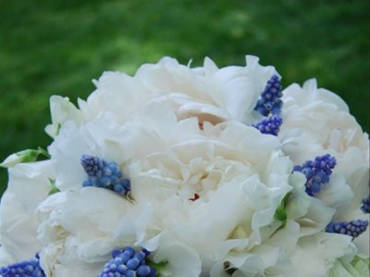 Tmx 1216734340534 DSC 0012 Pembroke, Massachusetts wedding florist