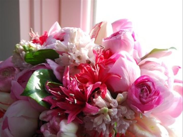 Tmx 1237930182269 DSC0049 Pembroke, Massachusetts wedding florist