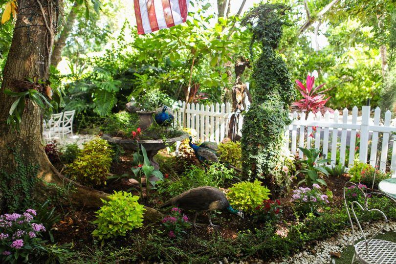 Tea Room Garden
