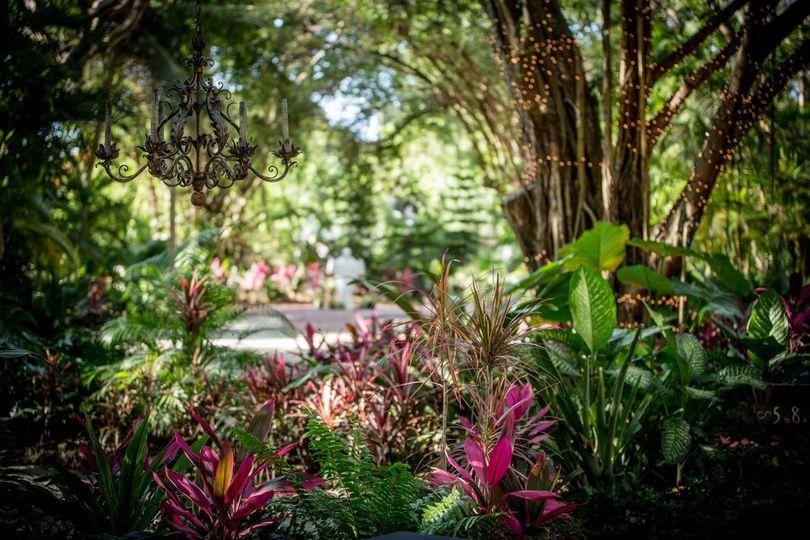 Garden Photos II