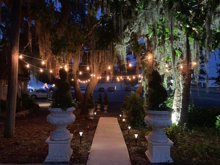Night Oaks