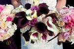 Lady Fancy Events LLC image