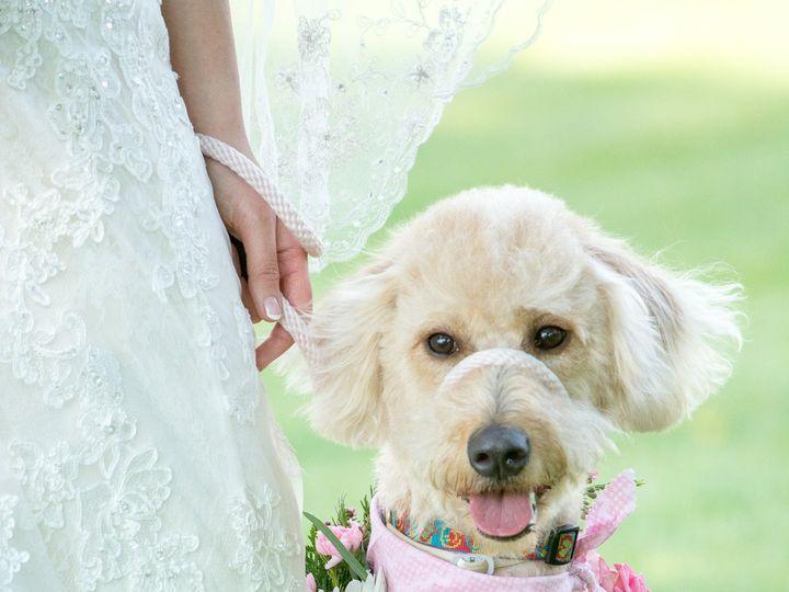 Tmx 1466618193148 Dsc7239 South Burlington, VT wedding photography