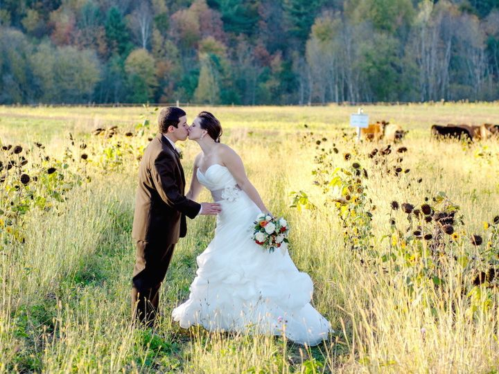 Tmx 1466618423395 Kissing Couple With Cows At A Vermont Wedding South Burlington, VT wedding photography