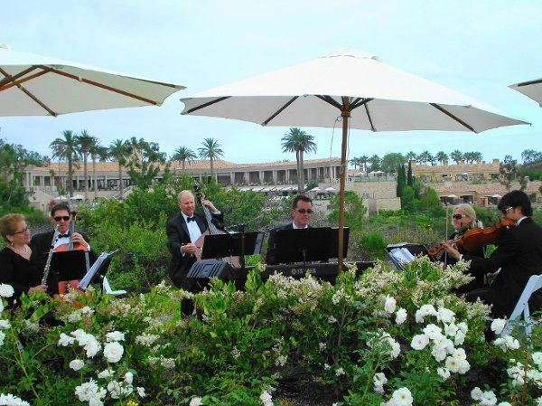 The Enchanted Evening Chamber Ensemble performing for a wedding ceremony at the Resort at Pelican...