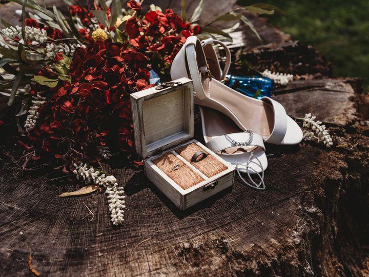 Tmx Hertzmannwedding Preview 18 51 2033869 162198987063708 Plano, IL wedding photography