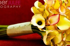Esther JuLee Photography