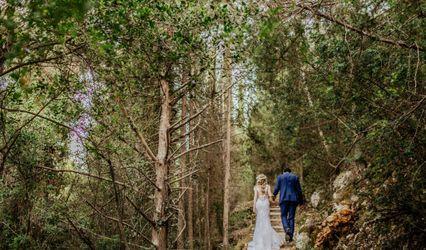 Olive Layne Weddings