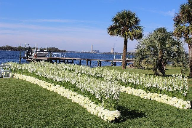 Wedding by the Water Aisle