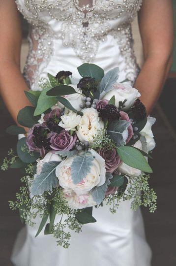 Purple, lavender garden roses