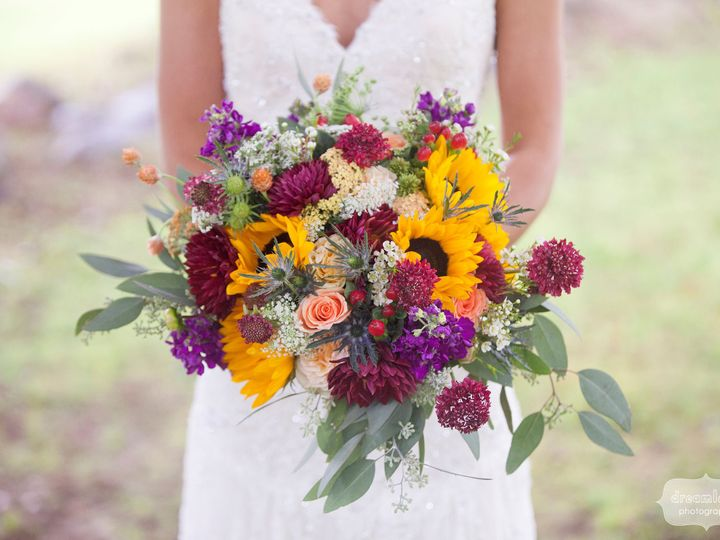 Tmx 1528206670 Bad86da48afc1d5c 1528206668 7ec3b74c4972ad12 1528206647519 2 Cait Armand Color  Franklin, NH wedding florist