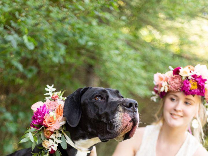 Tmx Floralsandpups 82 51 647969 161730088947245 Ashland, NH wedding florist