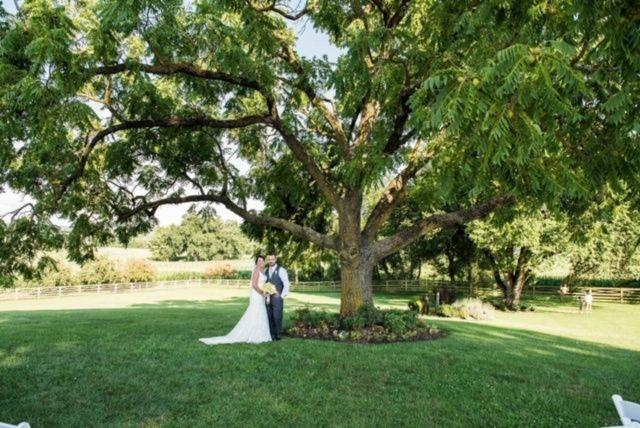 Tmx Ee891a17 D8bc 4081 8c08 D86af14b9902 51 167969 159705709699782 Walkersville, MD wedding venue