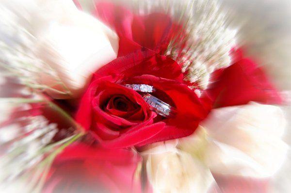 Carla's Photography