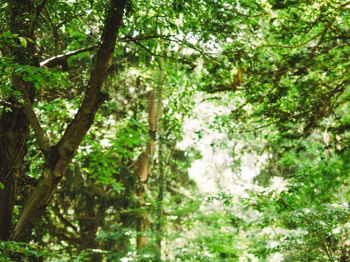 Tmx Maria Thomas Wedding Deep Cut Gardens 2020 584 51 1056179 159794405310894 Millstone Township, NJ wedding photography