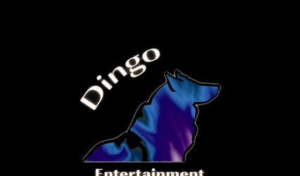 Dingo Entertainment