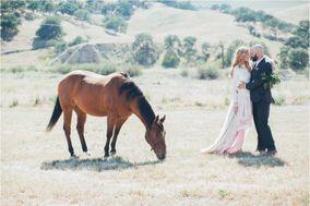 Miss Alysse Wedding Photography