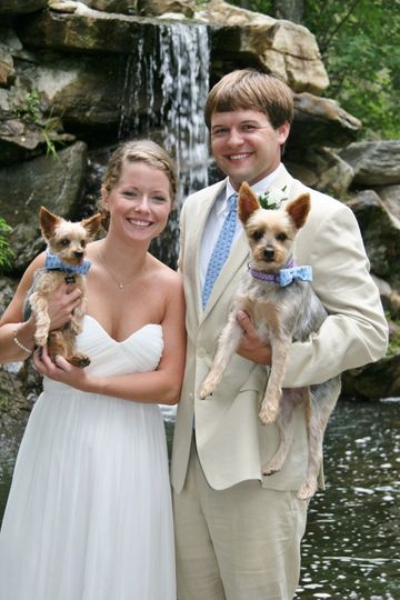 Newlyweds with dogs