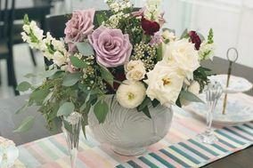 Daisy Girl Flowers