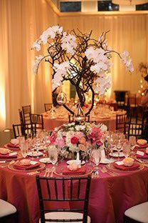 Tmx 1456784074166 5792 Anaheim wedding florist