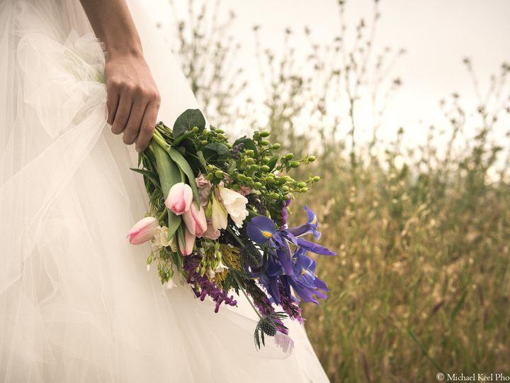 Tmx 1443724994483 Mkp90993 Petaluma wedding photography