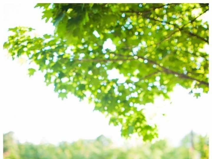 Tmx 1510609062860 Fbimg1491226082121 Westford wedding beauty