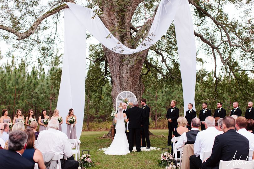 Giant Pecan Tree Ceremonies