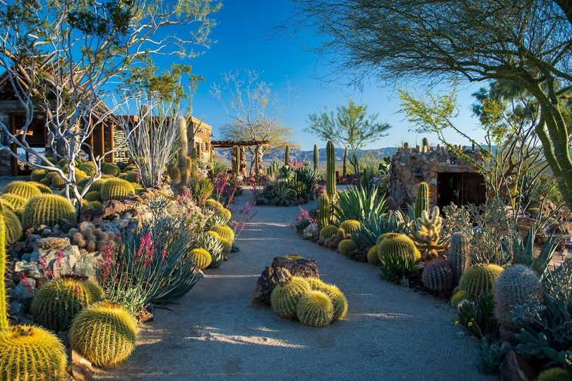 Remarkable cacti gardens