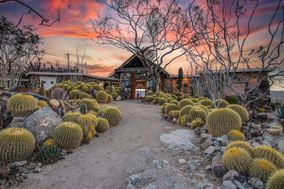 Mojave Moon Ranch