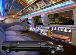 Tmx 1285017345508 Dimond81int250X180 Orlando wedding transportation